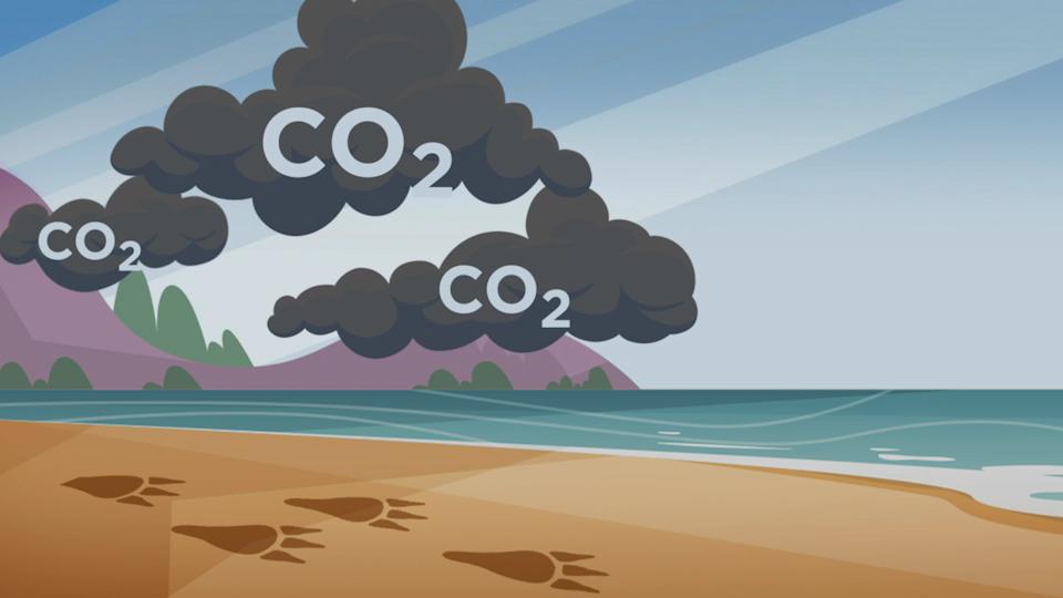 Nitrianske univerzitné dni 2021: Výherkyňa uhlíkového kvízu už má svoj tablet!